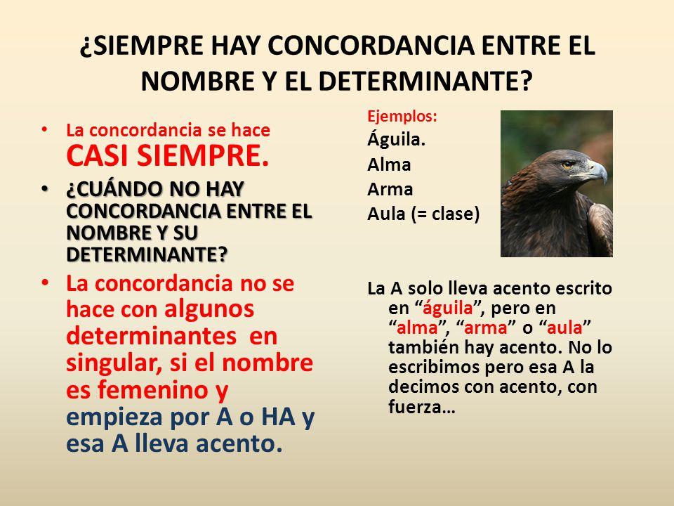 ¿SIEMPRE HAY CONCORDANCIA ENTRE EL NOMBRE Y EL DETERMINANTE