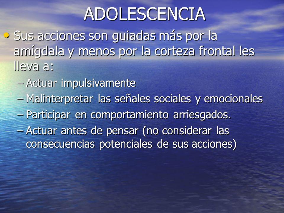 ADOLESCENCIA Sus acciones son guiadas más por la amígdala y menos por la corteza frontal les lleva a: