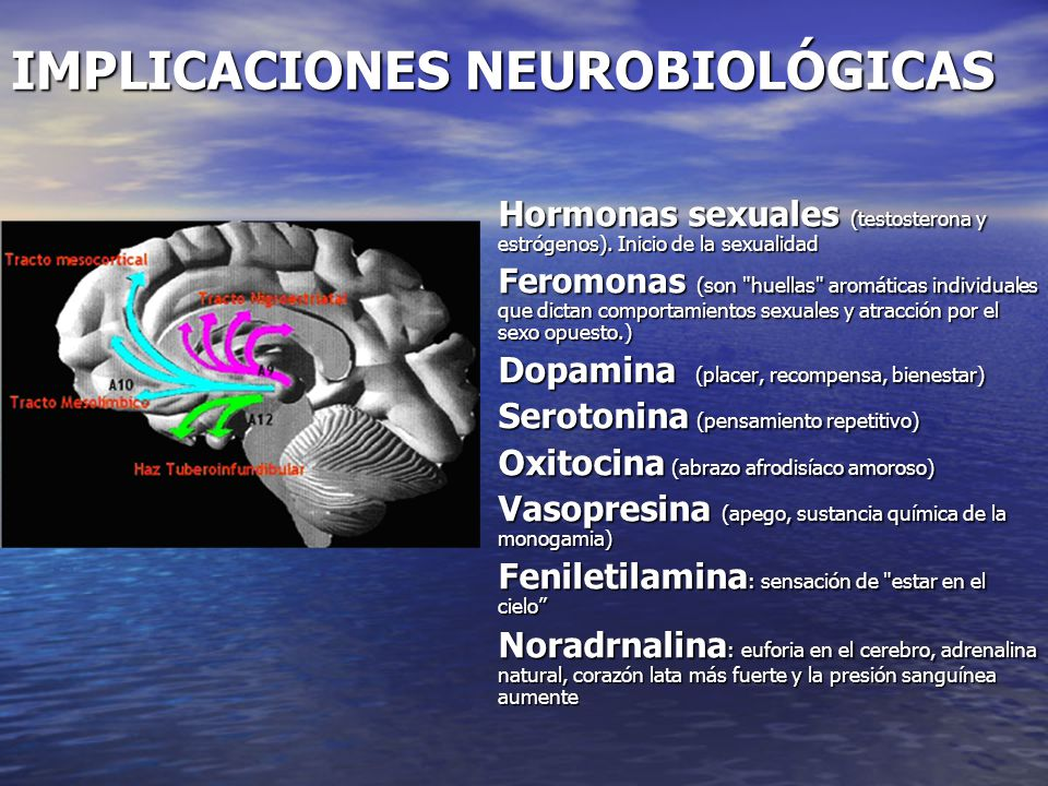 IMPLICACIONES NEUROBIOLÓGICAS