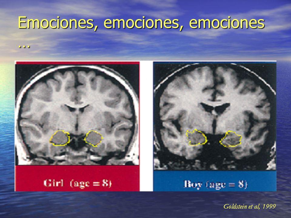 Emociones, emociones, emociones …