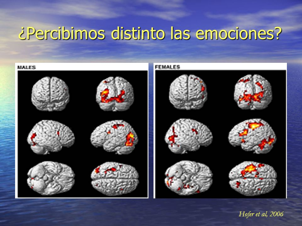 ¿Percibimos distinto las emociones
