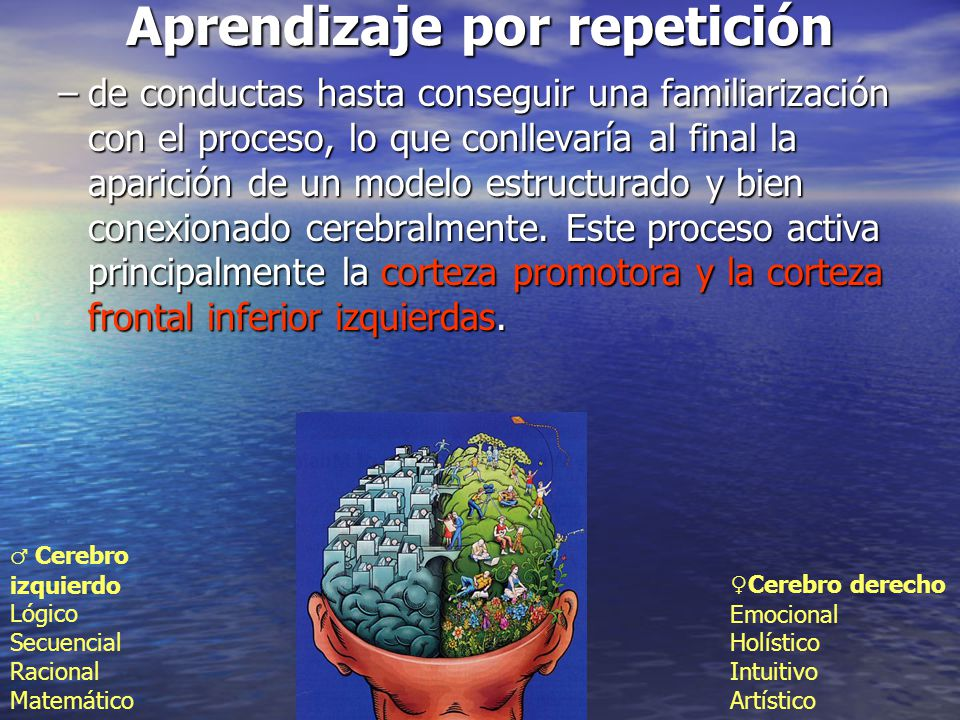 Aprendizaje por repetición