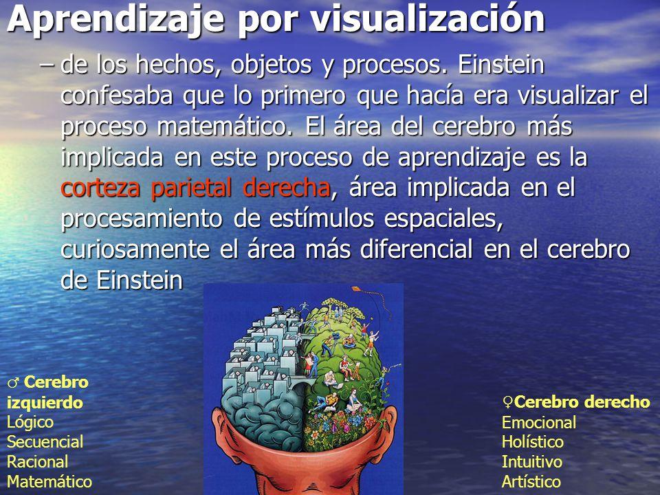 Aprendizaje por visualización
