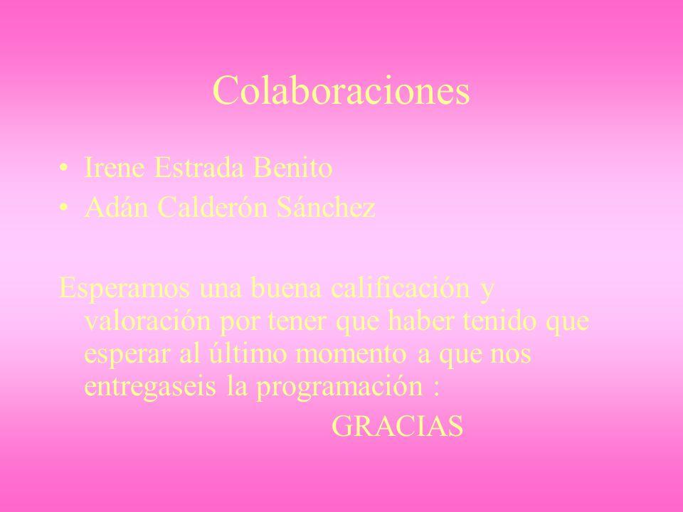 Colaboraciones Irene Estrada Benito Adán Calderón Sánchez