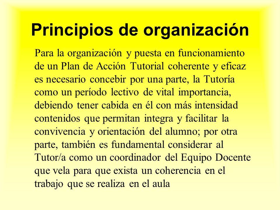 Principios de organización
