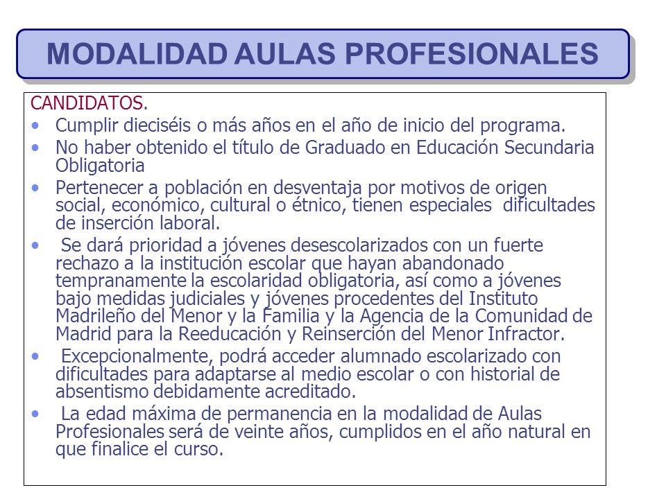 MODALIDAD AULAS PROFESIONALES
