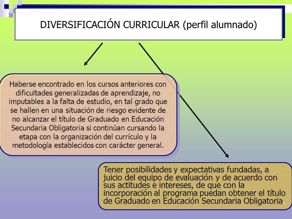 DIVERSIFICACIÓN CURRICULAR (perfil alumnado)