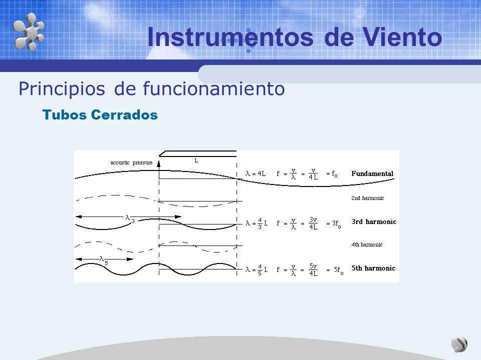 Instrumentos de Viento