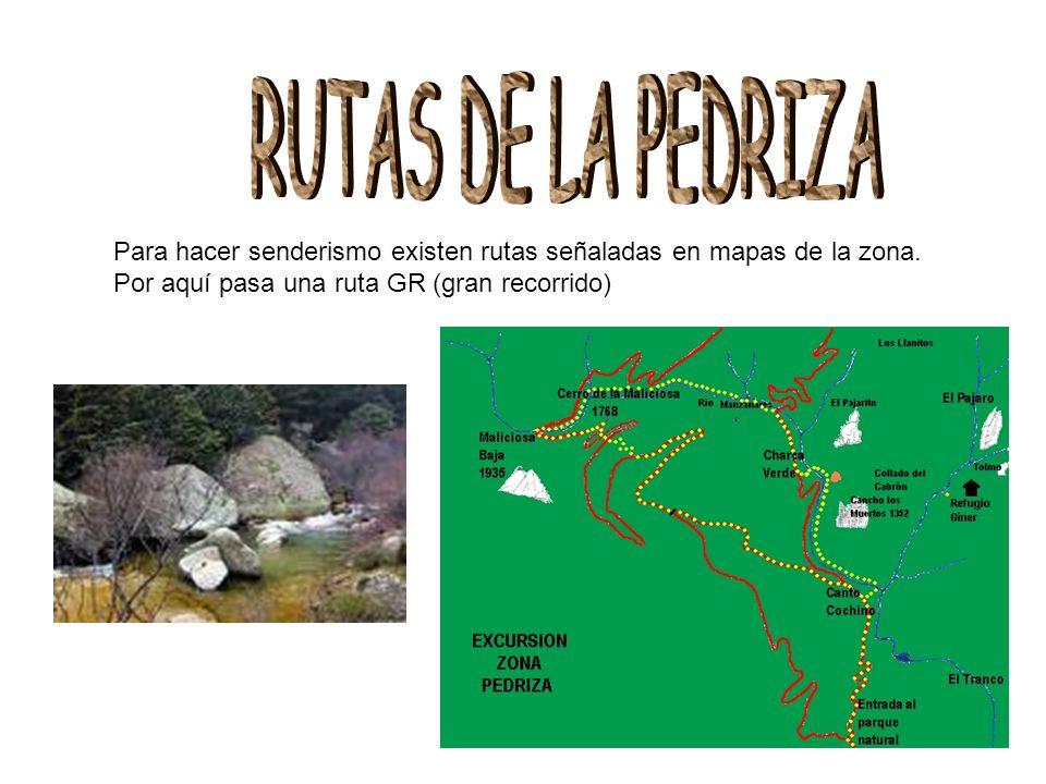 RUTAS DE LA PEDRIZA Para hacer senderismo existen rutas señaladas en mapas de la zona.