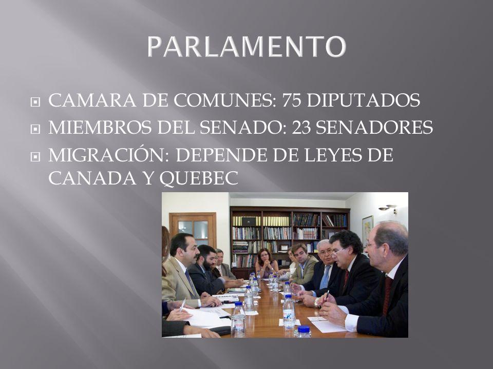 PARLAMENTO CAMARA DE COMUNES: 75 DIPUTADOS