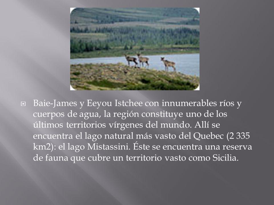 Baie-James y Eeyou Istchee con innumerables ríos y cuerpos de agua, la región constituye uno de los últimos territorios vírgenes del mundo.