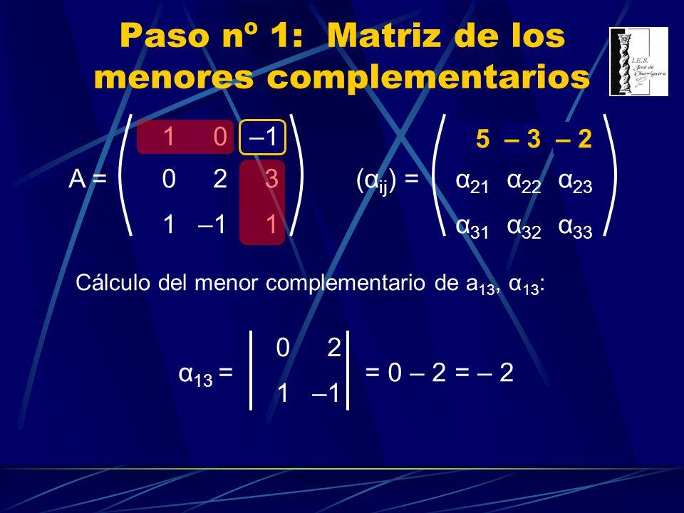 Paso nº 1: Matriz de los menores complementarios