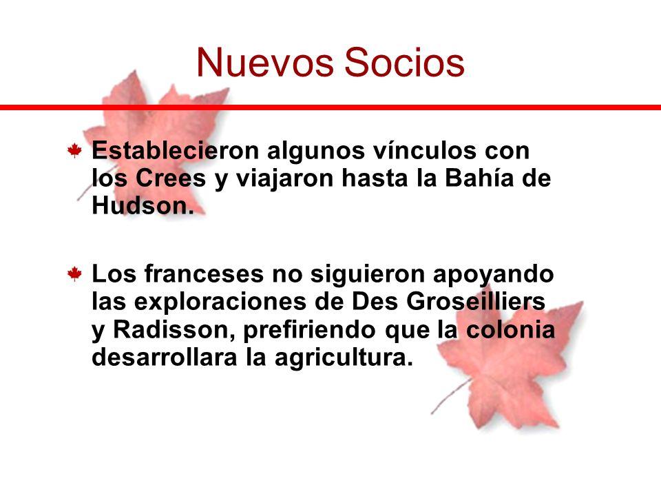 Nuevos SociosEstablecieron algunos vínculos con los Crees y viajaron hasta la Bahía de Hudson.