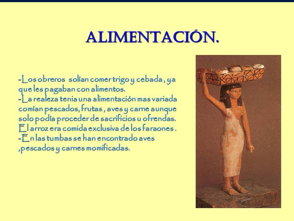 Alimentación ALIMENTACIÓN.