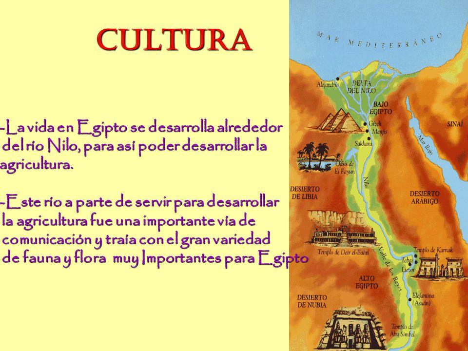 CULTURA CULTURA -La vida en Egipto se desarrolla alrededor