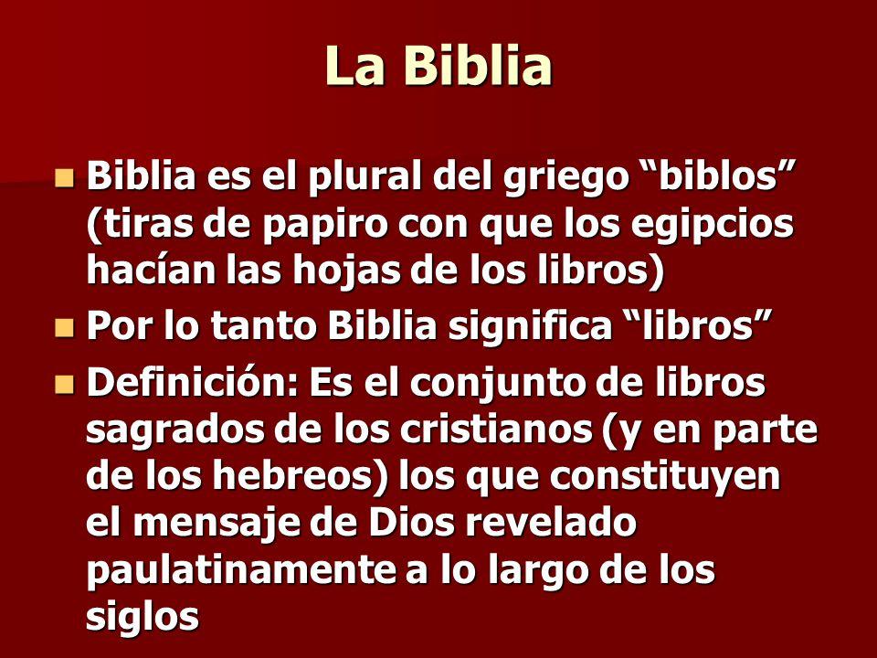 La Biblia Biblia es el plural del griego biblos (tiras de papiro con que los egipcios hacían las hojas de los libros)