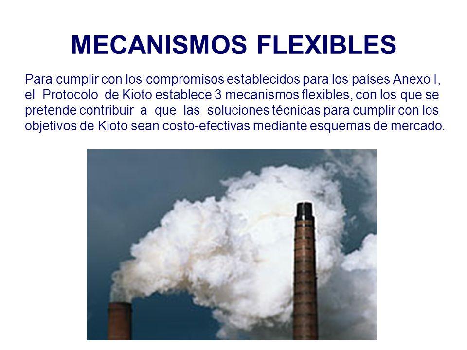 MECANISMOS FLEXIBLES