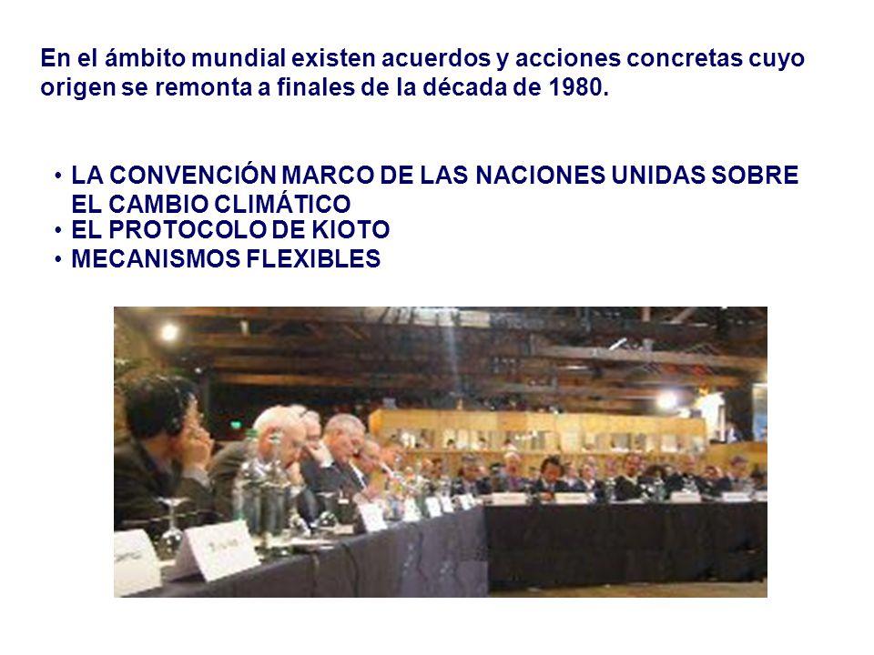 En el ámbito mundial existen acuerdos y acciones concretas cuyo origen se remonta a finales de la década de 1980.