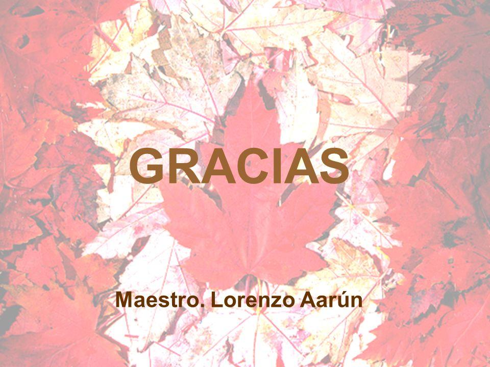 GRACIAS Maestro. Lorenzo Aarún