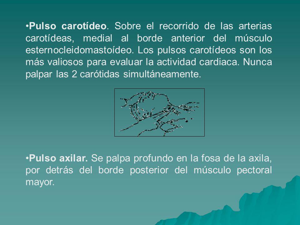 Pulso carotídeo. Sobre el recorrido de las arterias carotídeas, medial al borde anterior del músculo esternocleidomastoídeo. Los pulsos carotídeos son los más valiosos para evaluar la actividad cardiaca. Nunca palpar las 2 carótidas simultáneamente.