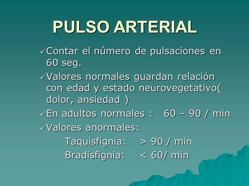 PULSO ARTERIAL Contar el número de pulsaciones en 60 seg.