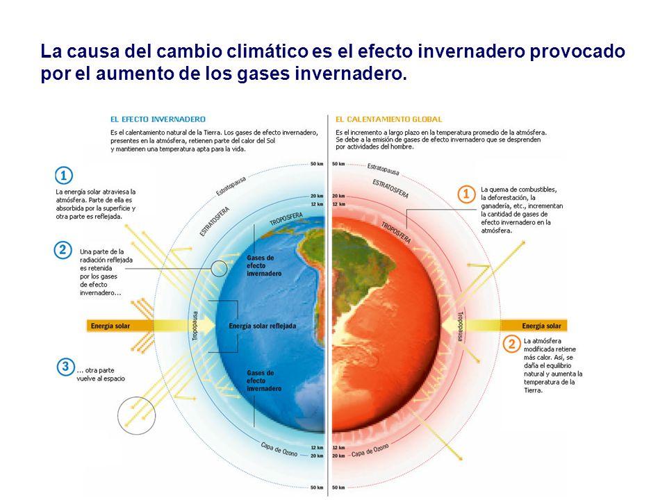 La causa del cambio climático es el efecto invernadero provocado por el aumento de los gases invernadero.