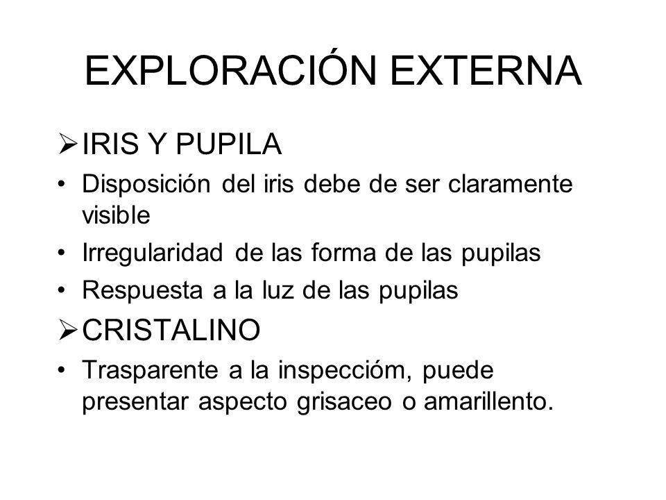 EXPLORACIÓN EXTERNA IRIS Y PUPILA CRISTALINO