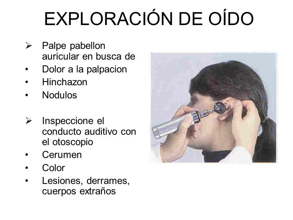 EXPLORACIÓN DE OÍDO Palpe pabellon auricular en busca de