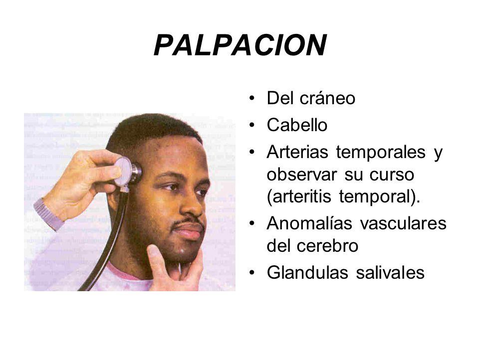 PALPACION Del cráneo Cabello