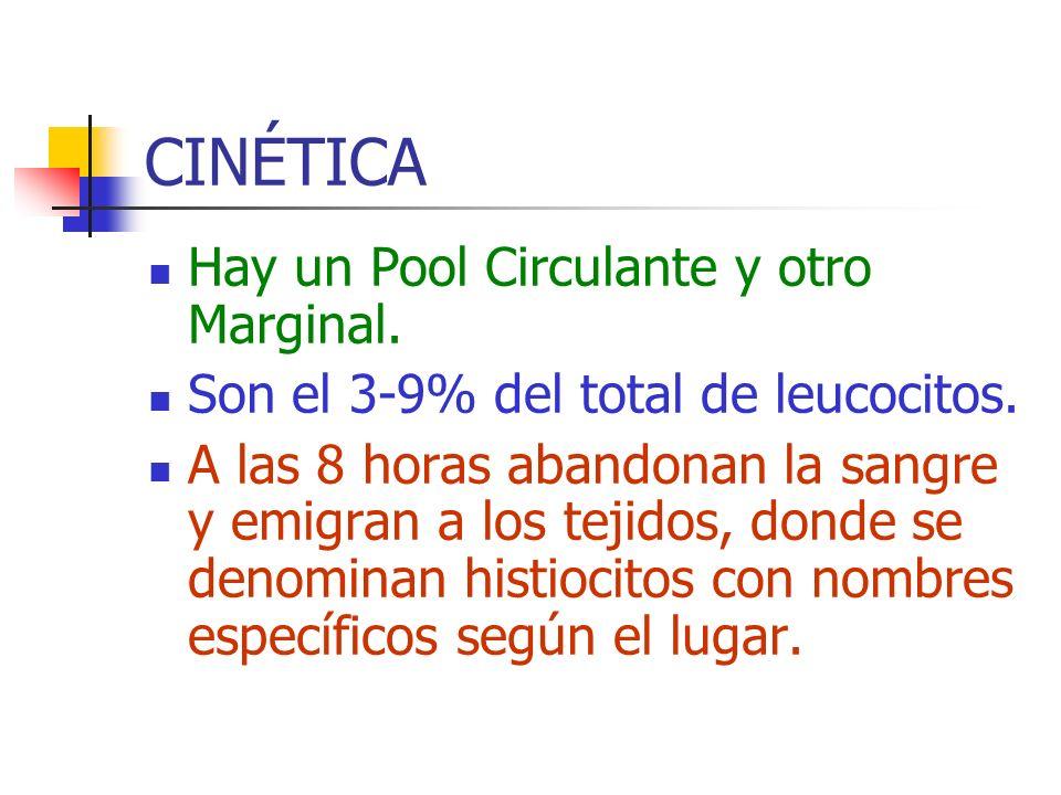CINÉTICA Hay un Pool Circulante y otro Marginal.