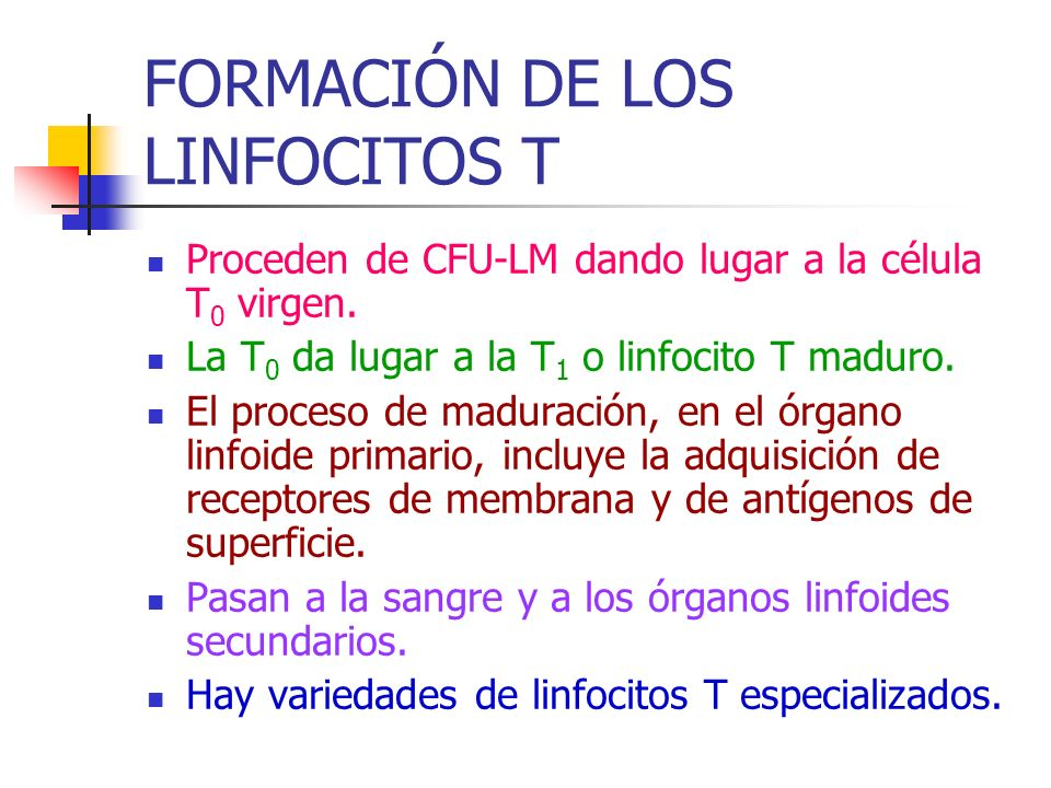 FORMACIÓN DE LOS LINFOCITOS T