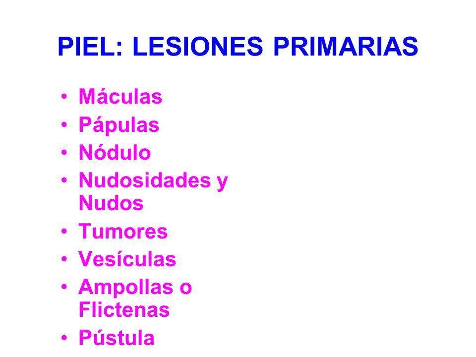 PIEL: LESIONES PRIMARIAS