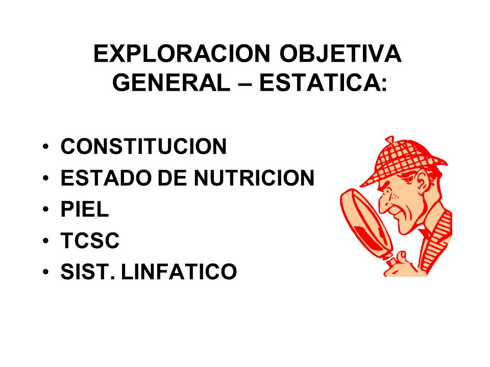 EXPLORACION OBJETIVA GENERAL – ESTATICA: