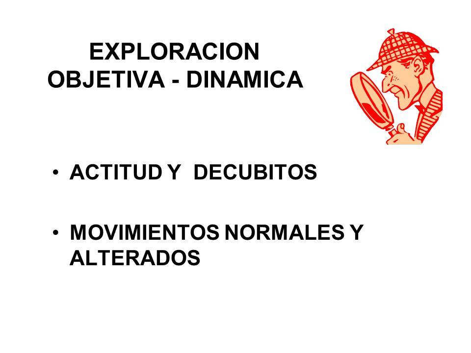 EXPLORACION OBJETIVA - DINAMICA
