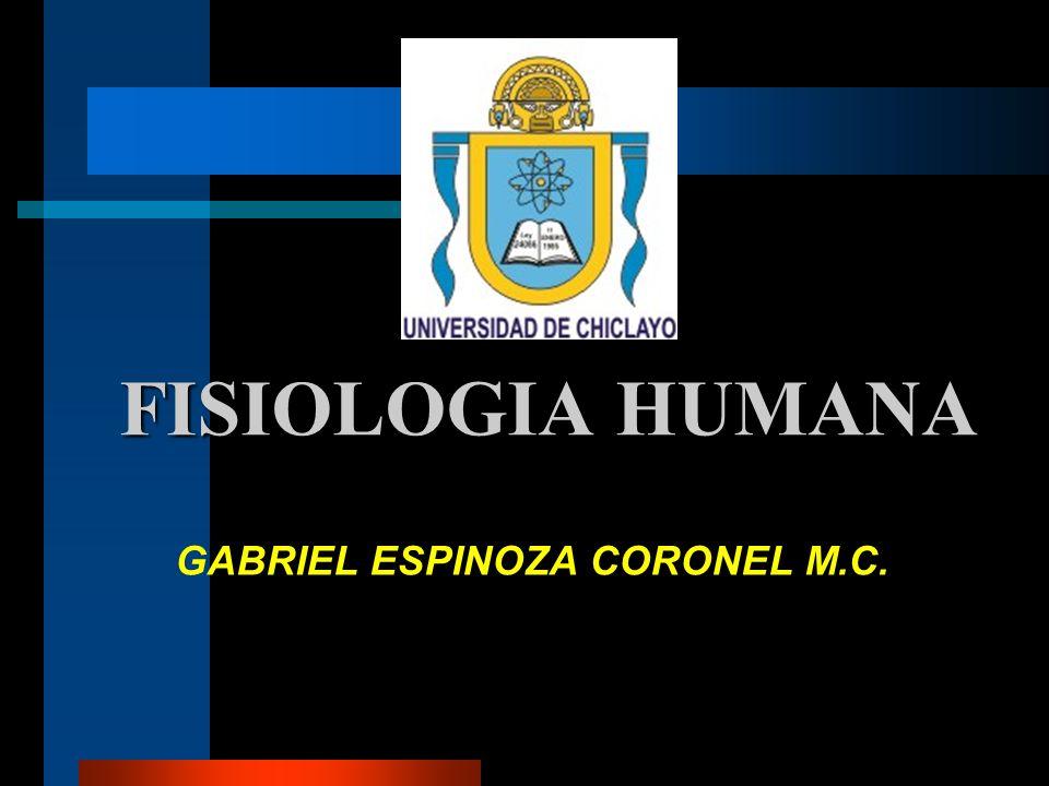 GABRIEL ESPINOZA CORONEL M.C.