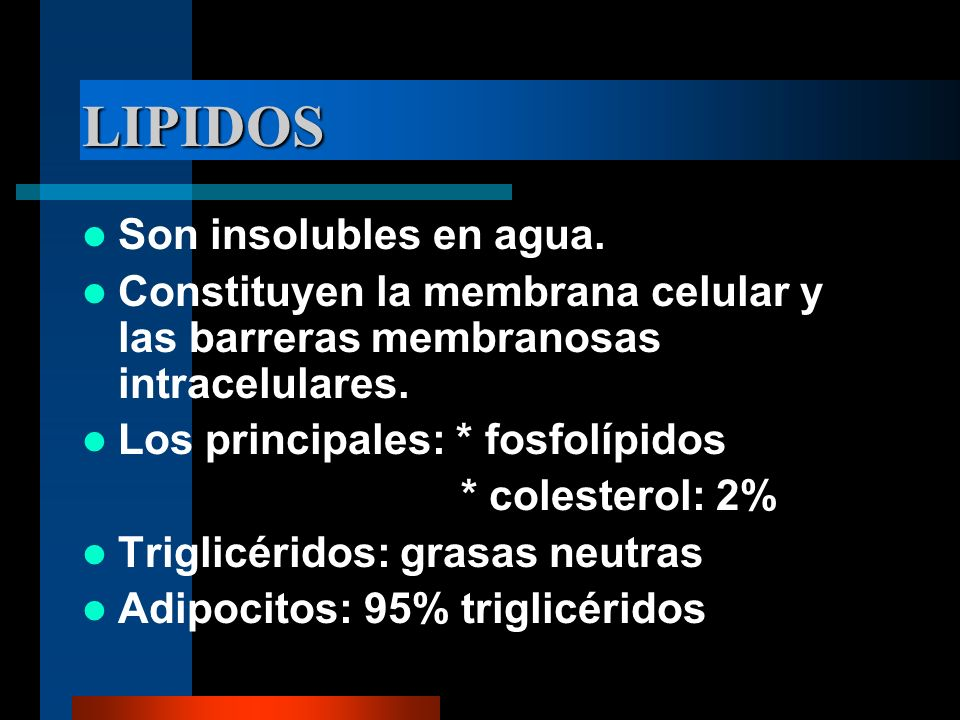 LIPIDOS Son insolubles en agua.