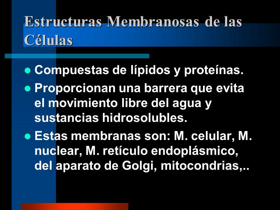 Estructuras Membranosas de las Células