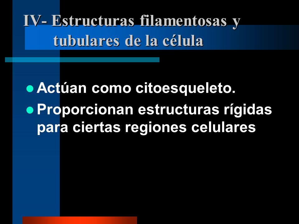 IV- Estructuras filamentosas y tubulares de la célula