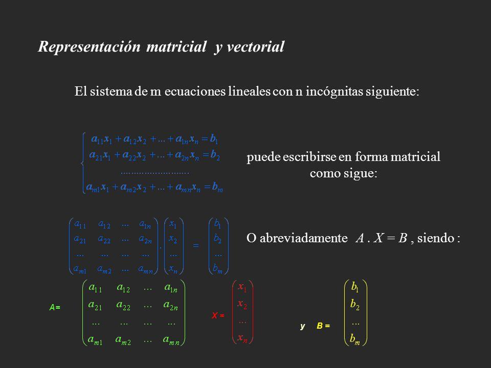Representación matricial y vectorial