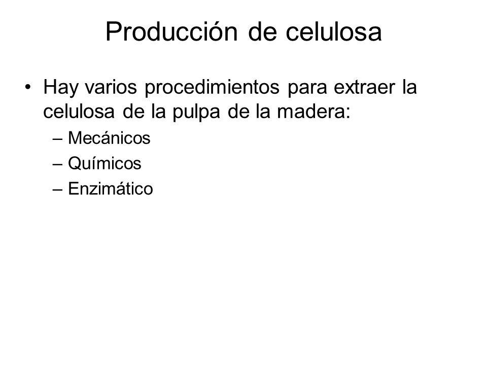 Producción de celulosa
