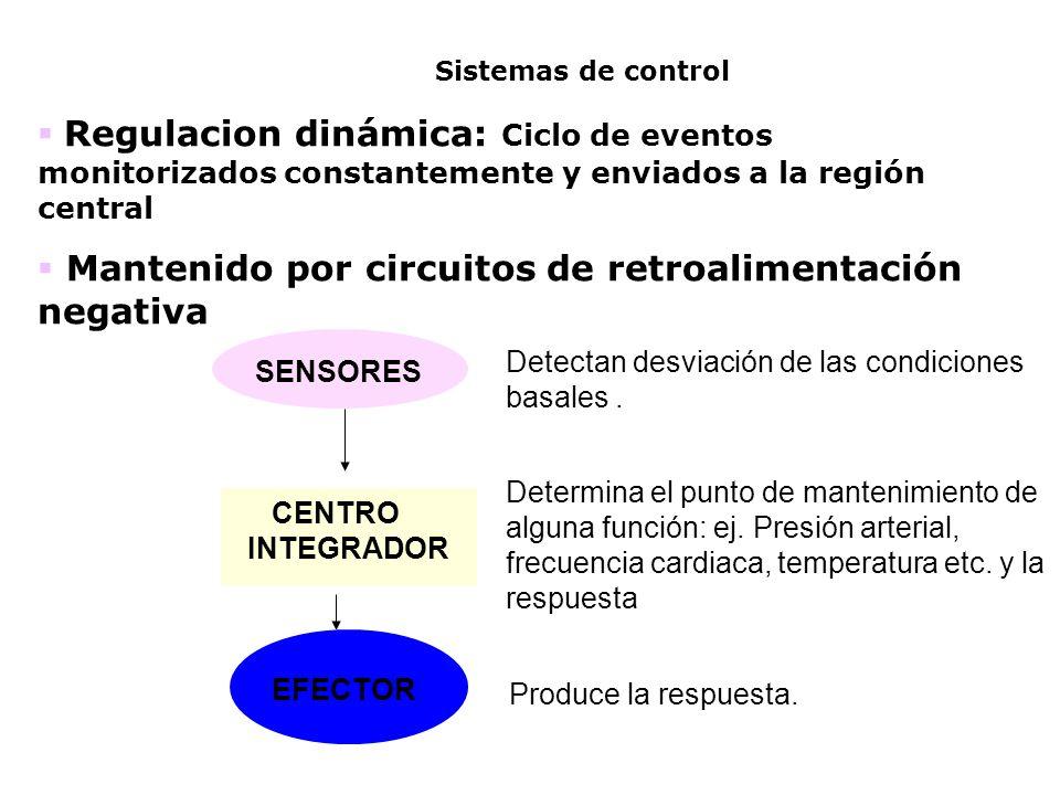 Sistemas de control Regulacion dinámica: Ciclo de eventos monitorizados constantemente y enviados a la región central.