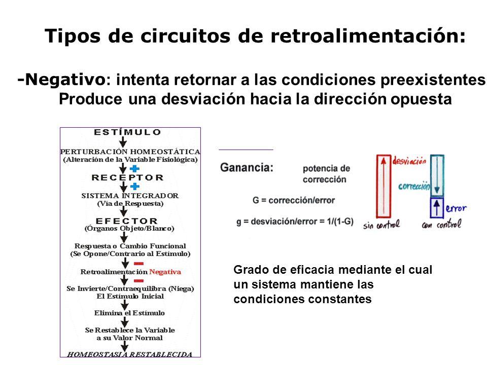 Tipos de circuitos de retroalimentación: