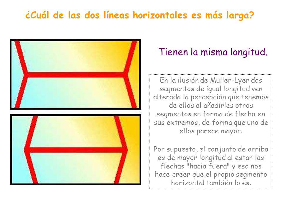¿Cuál de las dos líneas horizontales es más larga