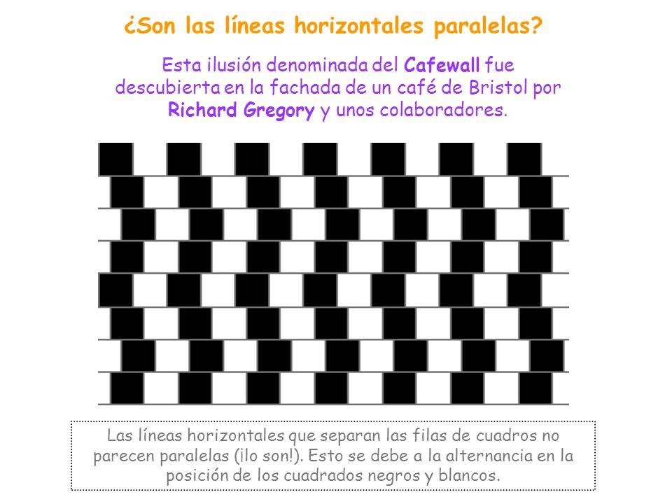 ¿Son las líneas horizontales paralelas