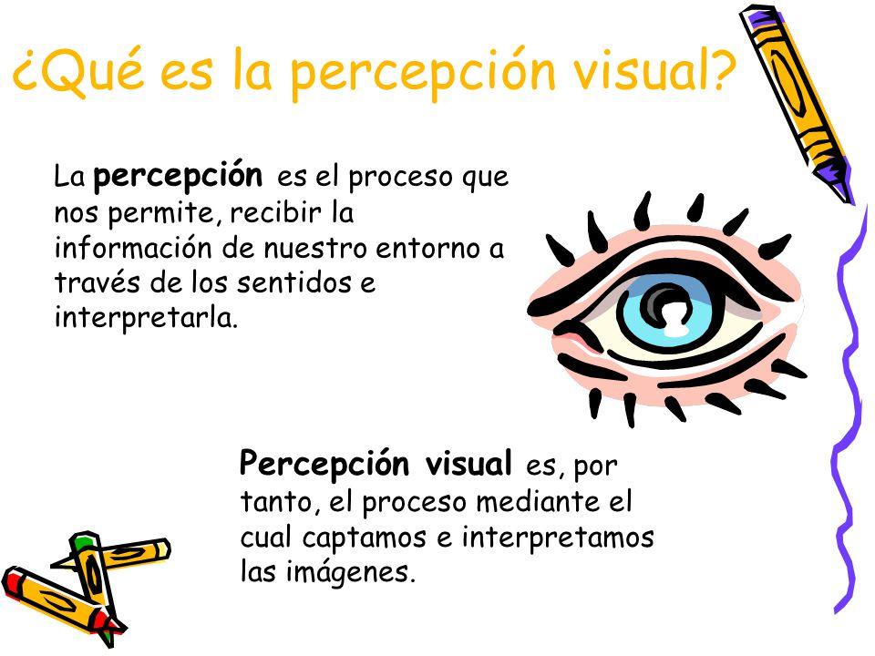 ¿Qué es la percepción visual