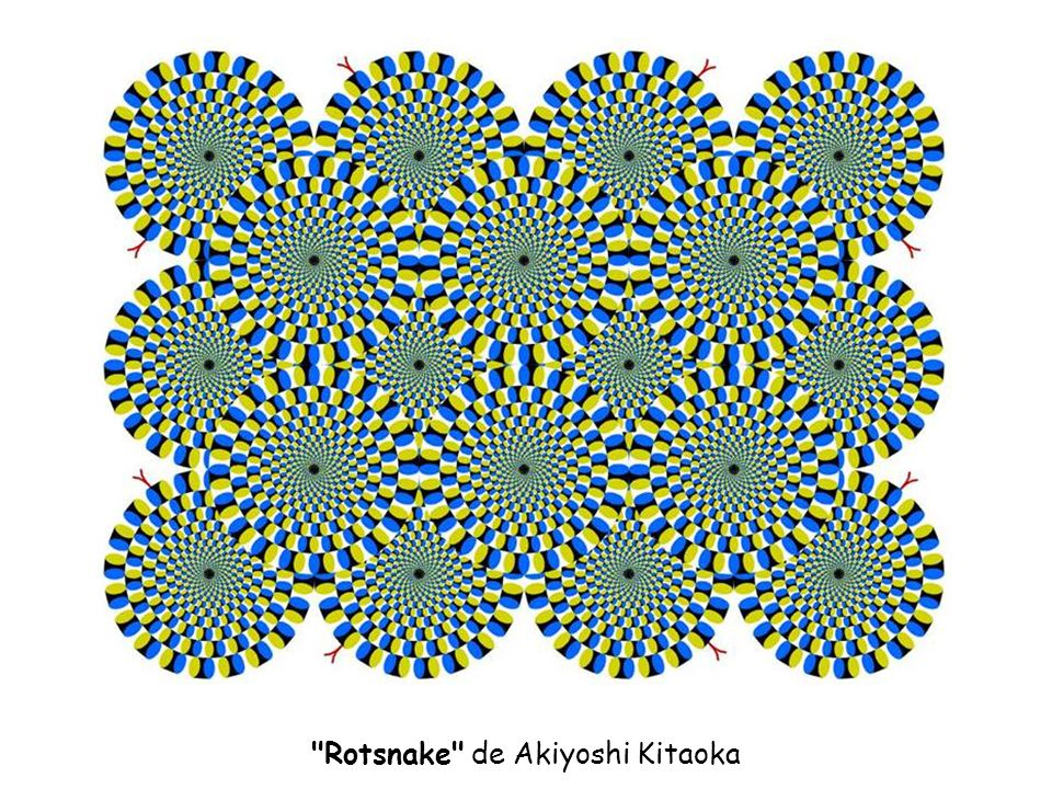 Rotsnake de Akiyoshi Kitaoka