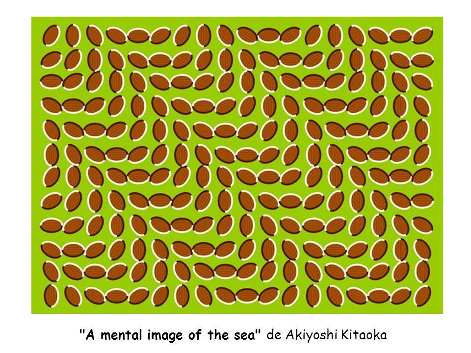 A mental image of the sea de Akiyoshi Kitaoka