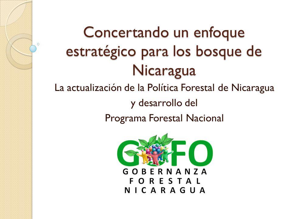 Concertando un enfoque estratégico para los bosque de Nicaragua