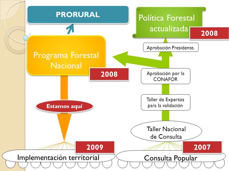 Programa Forestal Nacional