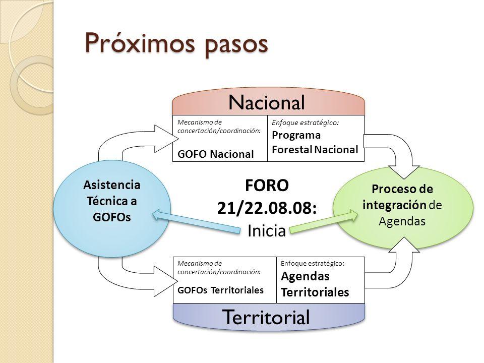 Asistencia Técnica a GOFOs